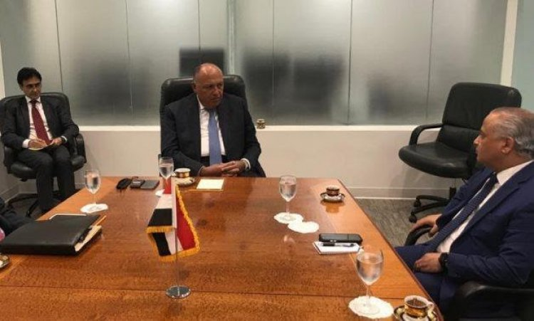 Sudan and Egypt call for Security Council meeting dialogue over GERD