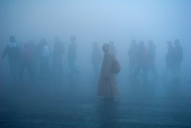 Air Pollution Is One of the World's Greatest Threats to Human Health